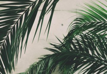 La ventilation de votre logement: principes, conseils et astuce